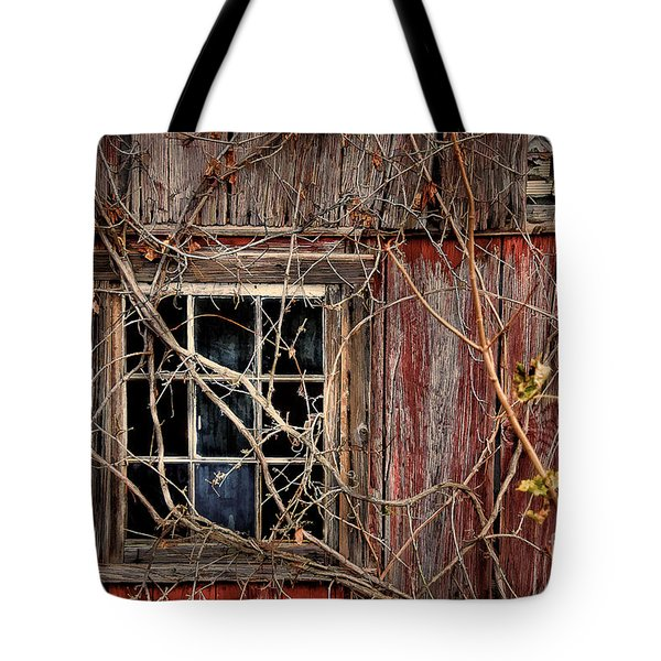Tangled Up In Time Tote Bag