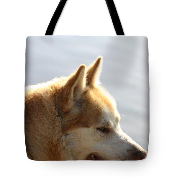 Tanka - Husky Tote Bag by EricaMaxine  Price