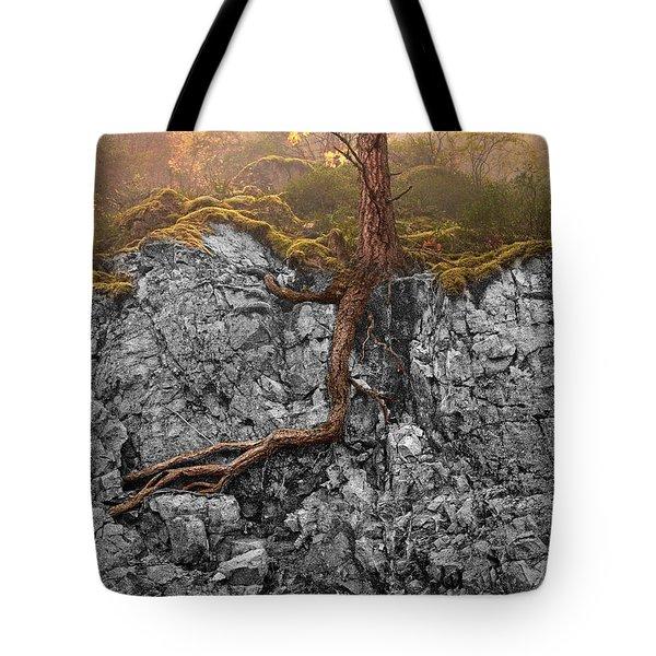 Taproot Tote Bag