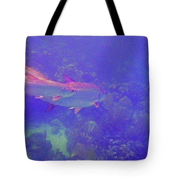 Tarpon Reef Tote Bag by Carey Chen