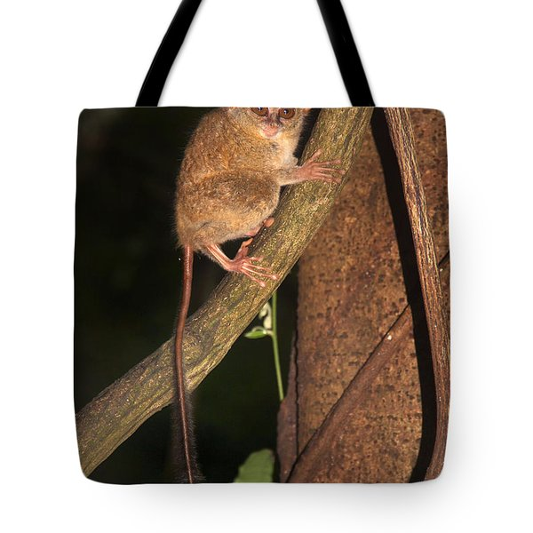 Tote Bag featuring the photograph Tarsius Tarsier  by Sergey Lukashin