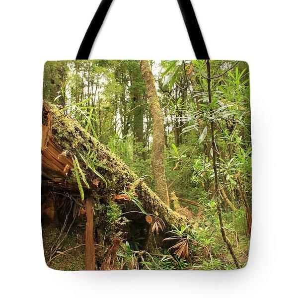 Tasmanian Rain Forest All Profits Go To Hospice Of The Calumet Area Tote Bag