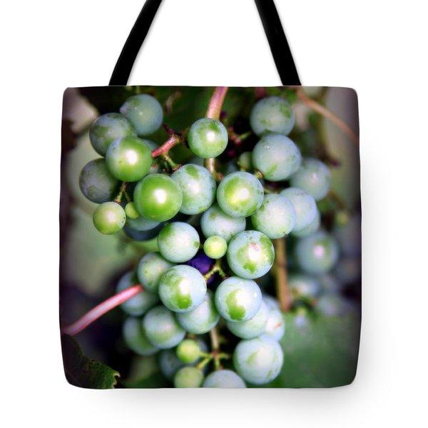 Taste Of Nature Tote Bag by Karen Wiles