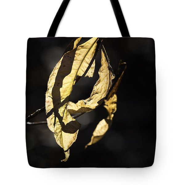 Tattered Leaf Tote Bag by Fran Gallogly