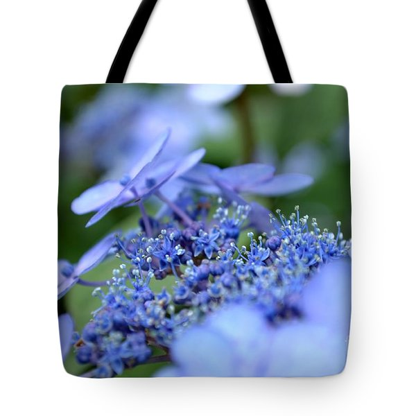 Taube Lacecap Hydrangea Tote Bag by Scott Lyons