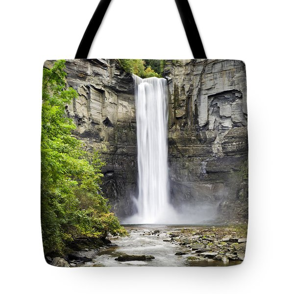 Taughannock Falls And Creek Tote Bag by Christina Rollo
