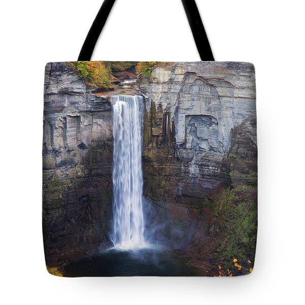 Taughannock Falls In Autumn Tote Bag