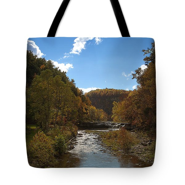 Tote Bag featuring the photograph Taughannock Lower Falls Ithaca New York by Paul Ge