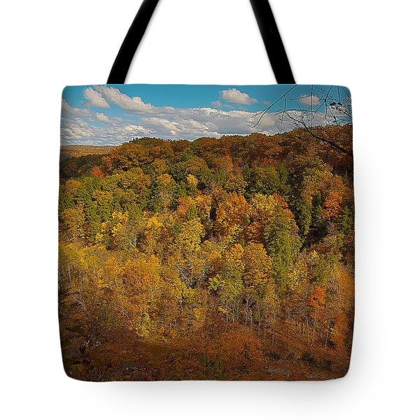 Tote Bag featuring the photograph Taughannock River Canyon In Colorful Fall Ithaca New York II by Paul Ge