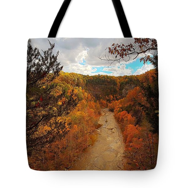 Tote Bag featuring the painting Taughannock River Canyon In Colorful Fall Ithaca New York IIi by Paul Ge