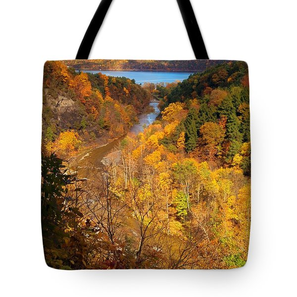 Tote Bag featuring the photograph Taughannock River Canyon In Colorful Fall Ithaca New York by Paul Ge