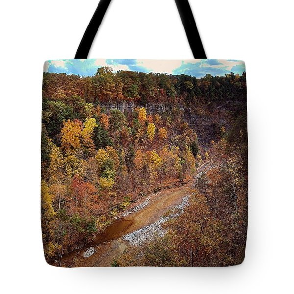 Tote Bag featuring the painting Taughannock River Canyon In Colorful Fall Ithaca New York V by Paul Ge