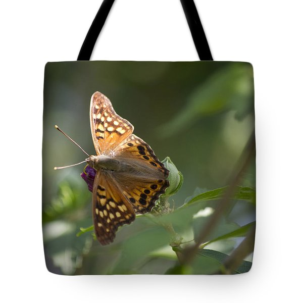 Tawny Emperor On Hibiscus Tote Bag by Shelly Gunderson