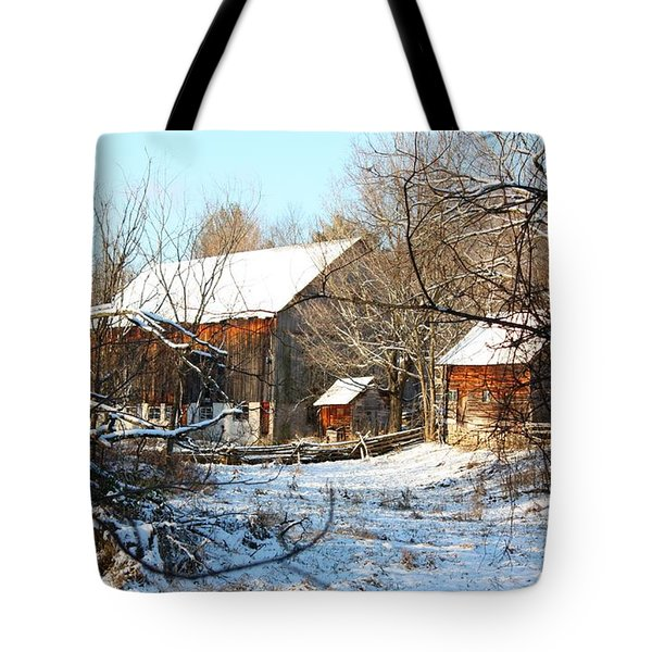 Tote Bag featuring the photograph Tay Valley Barn by Pat Purdy