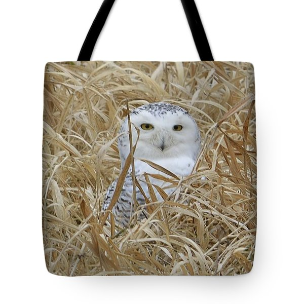 Taylor Snow Tote Bag by Randy Bodkins