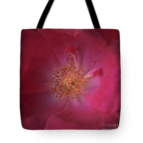 Tote Bag featuring the photograph Tea Rose by Debra Fedchin