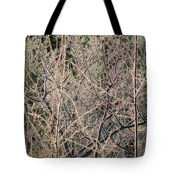 Tote Bag featuring the photograph Technicolour Frost by Brian Boyle