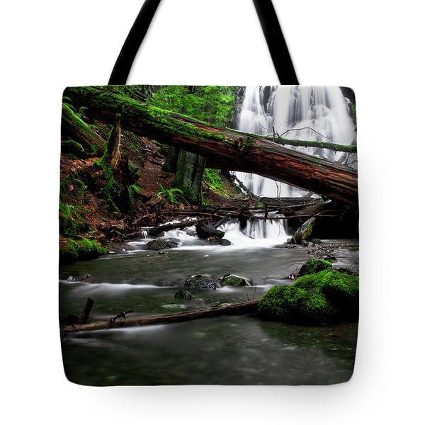 Temperate Old Growth Tote Bag