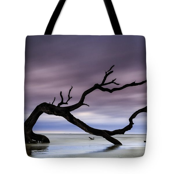 Tempest Tossed Tote Bag