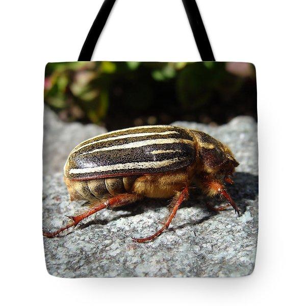 Ten-lined June Beetle Profile Tote Bag