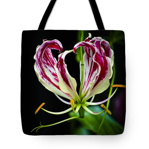 Tendrils Of My Mind Tote Bag by Christi Kraft