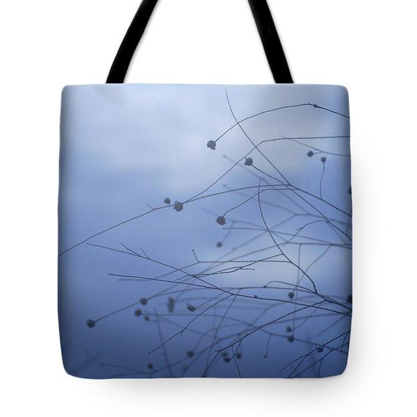 Tentaculos Del Cielo Tote Bag by Guido Montanes Castillo