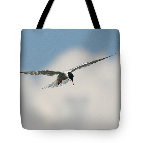 Tern In Flight Tote Bag