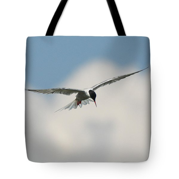 Tern In Flight Tote Bag