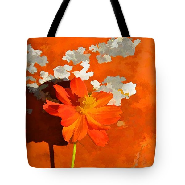 Terra Cotta Shadows Tote Bag by Jan Amiss Photography