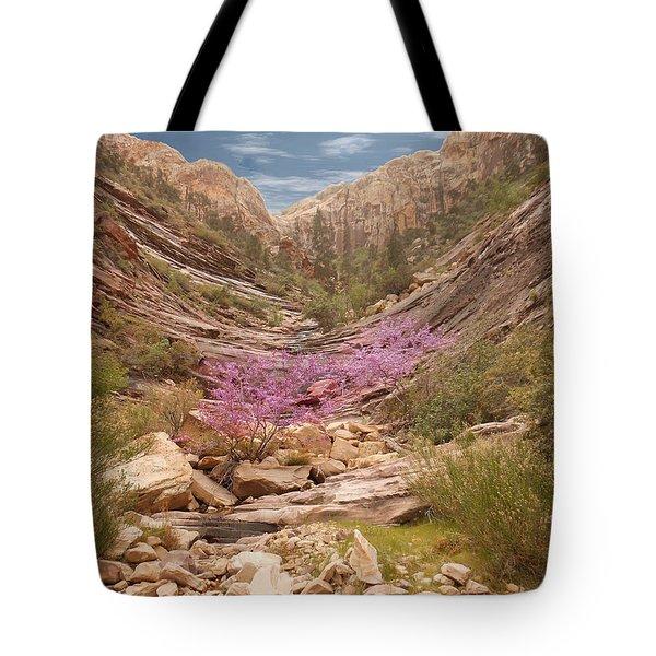 Terrace Canyon Tote Bag by Alan Socolik