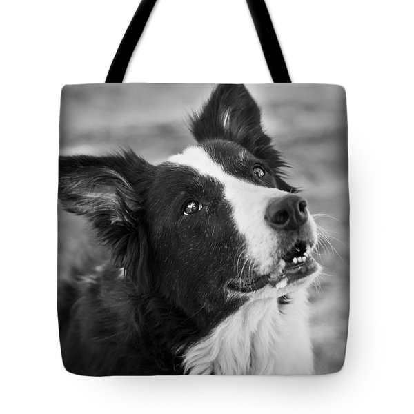 Tessie 9 Tote Bag by Rich Franco