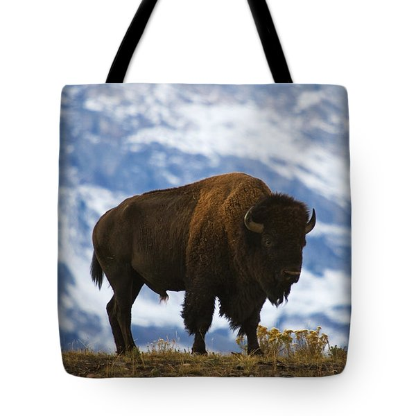 Teton Bison Tote Bag by Mark Kiver
