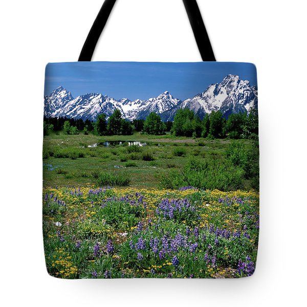 Teton Grandeur Tote Bag by Ed  Riche