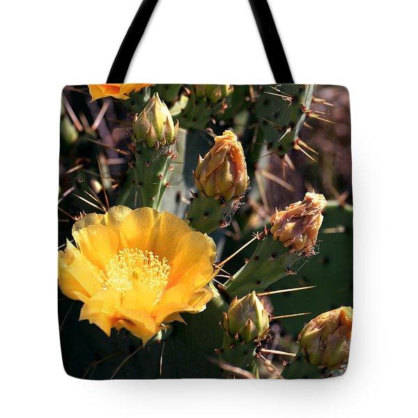 Texas Cactus Tote Bag