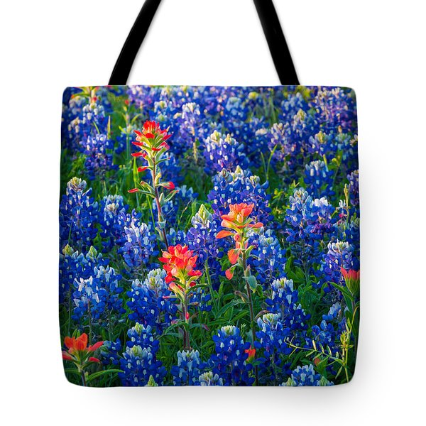 Texas Colors Tote Bag