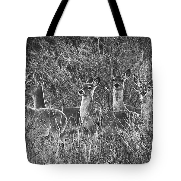 Texas Deer Tote Bag