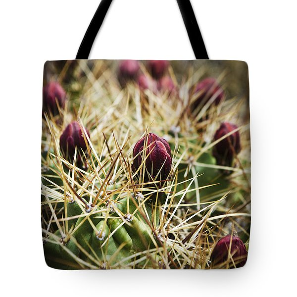 Texas Blooming Cactus Tote Bag