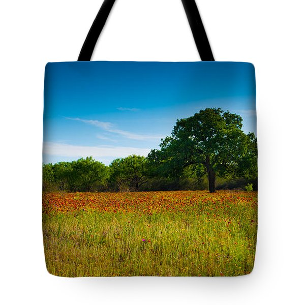 Texas Hill Country Meadow Tote Bag by Darryl Dalton