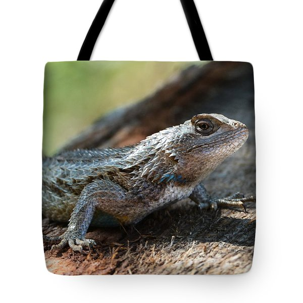 Texas Lizard Tote Bag