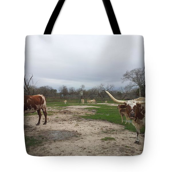 Texas Longhorns Tote Bag by Shawn Marlow