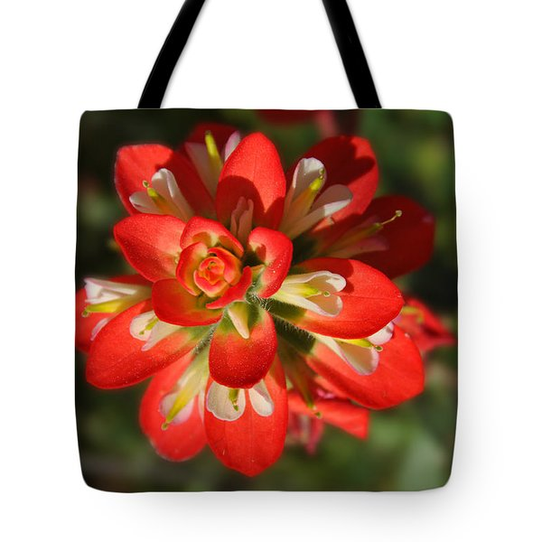Texas Paintbrush Tote Bag