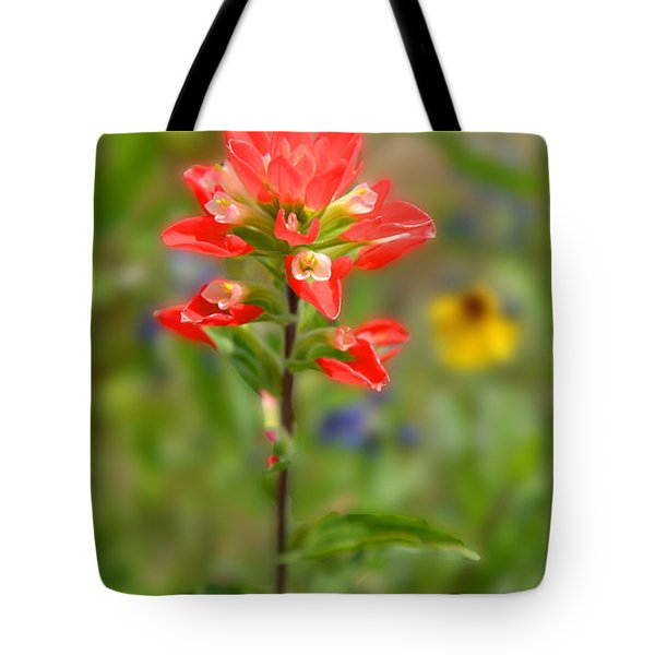 Texas Red Indian Paintbrush Tote Bag by Lynn Bauer