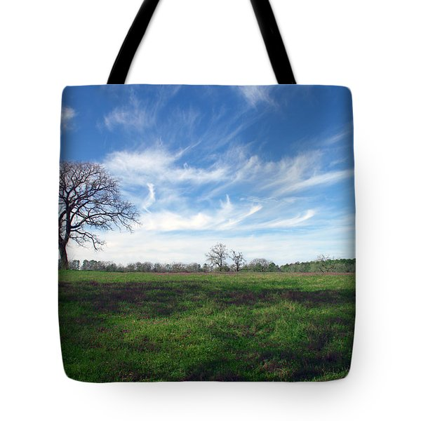 Texas Sky Tote Bag by Brian Harig