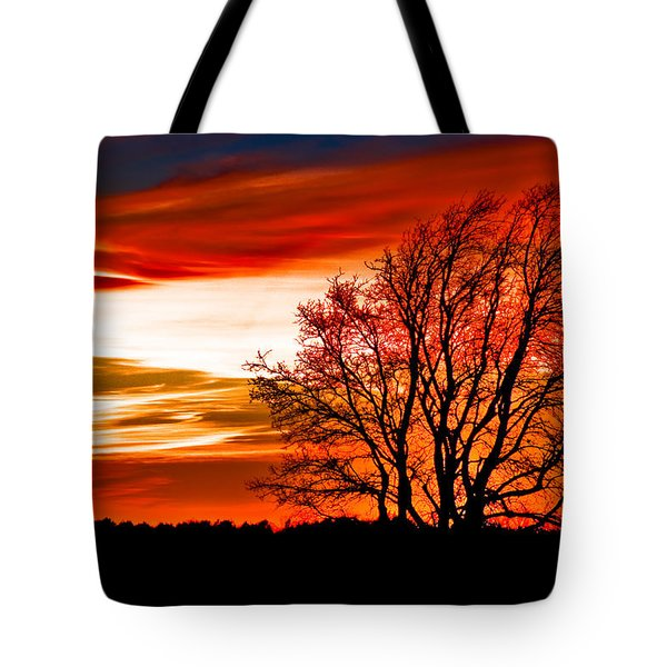 Texas Sunset Tote Bag by Darryl Dalton