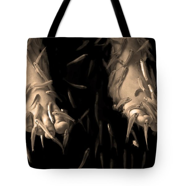 Tote Bag featuring the photograph Thai Fish Spa Pedicure by Jennifer Wright