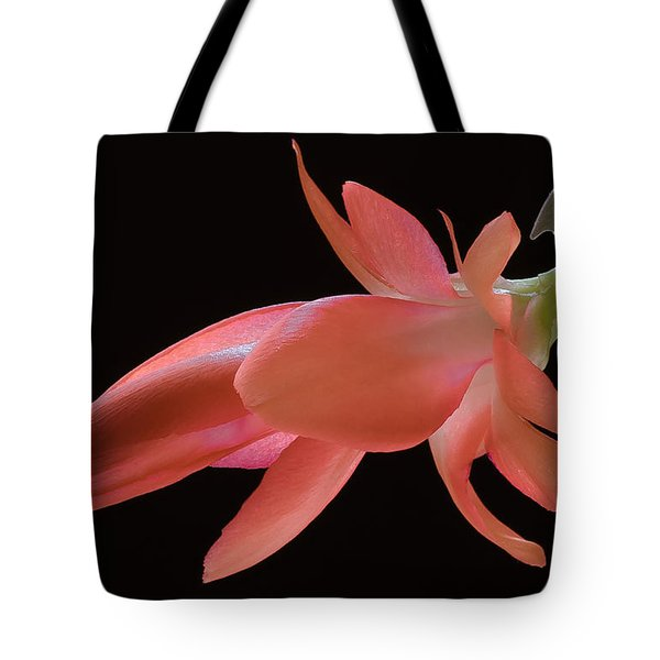 Thanksgiving Cactus Tote Bag by James Barber