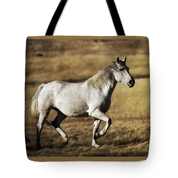 Tote Bag featuring the photograph That Golden Hour D3550 by Wes and Dotty Weber
