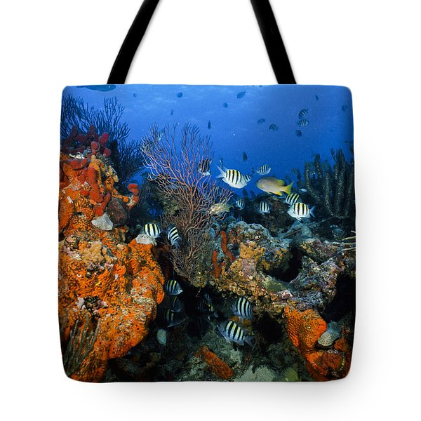 The Active Reef Tote Bag