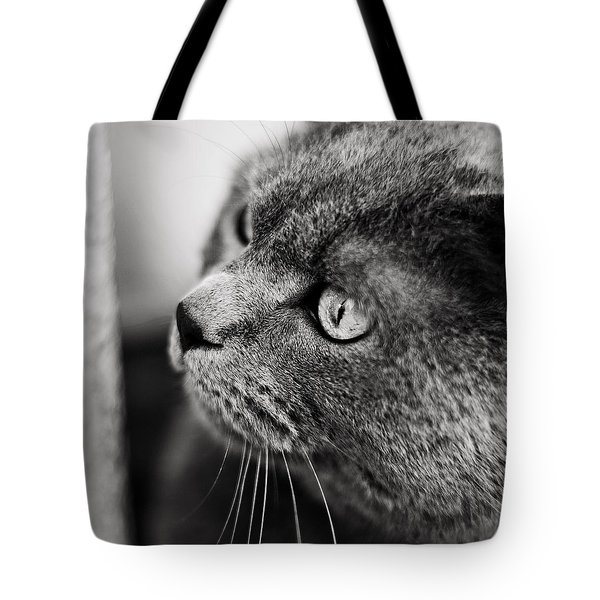 The Ambush Tote Bag by Laura Melis