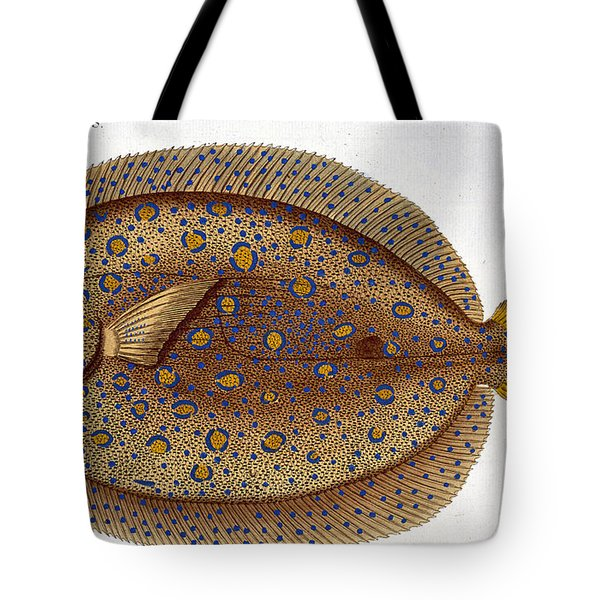 The Argus Flounder Tote Bag by Andreas Ludwig Kruger